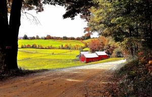 10-Jenne Farm, Reading, VT-f