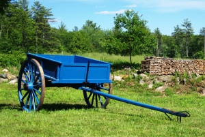 Blue Wagon