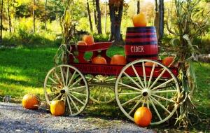 Cider Wagon