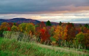 Hillside scene 2, Stowe, VT