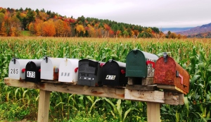 Mailboxes and Maize