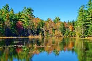Pond, Deeering, NH