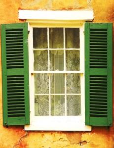 Window, green shutters