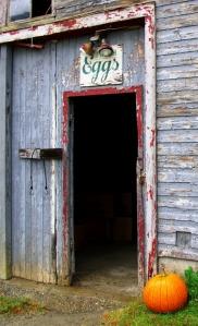 Fresh Eggs, Stowe, VT